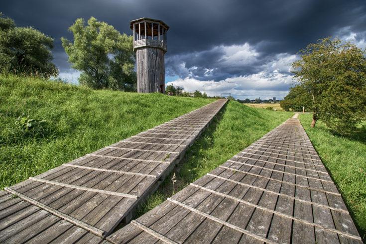 Walkway and Tower | Tadashi Kawamata