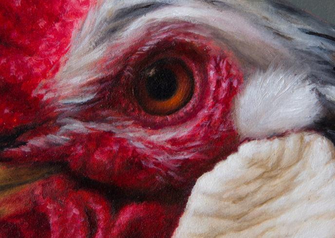 Portrait Rooster (Detail)