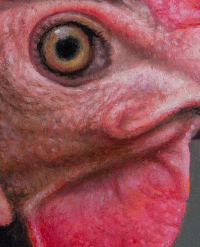 Portrait Hen (Detail)