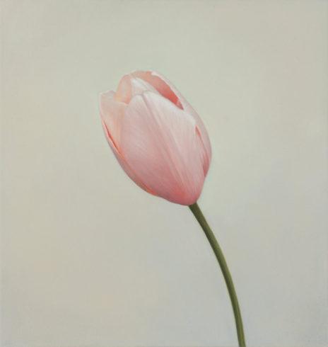 Tulpe IV, 2019, Öl auf MDF, 31 x 30 cm