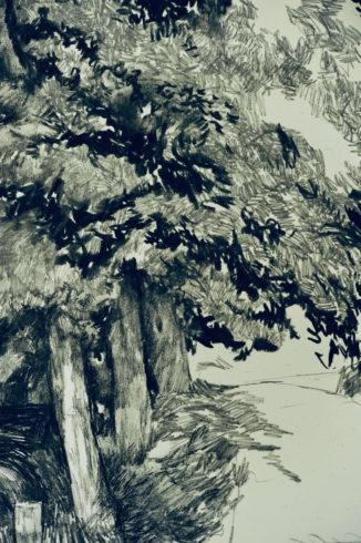 Bleistift Landschaftszeichnungen Ina Riepe 02