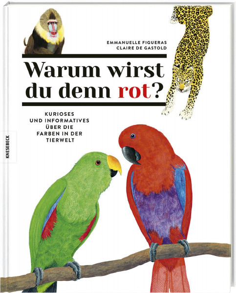 Knesebeck Verlag Warum wirst du denn rot?