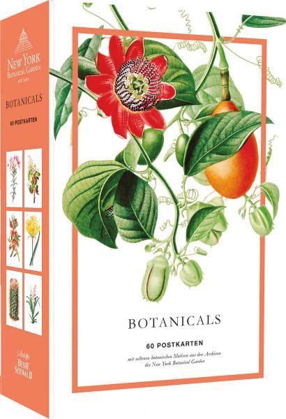 Botanicals: 60 Postkarten   Busse Seewald