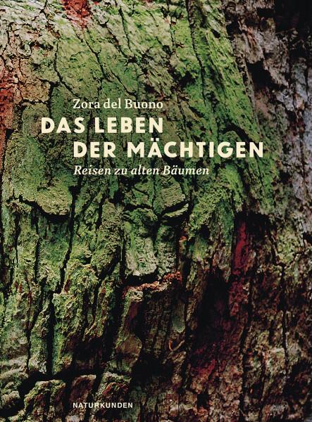 Matthes & Seitz Das Leben der Mächtigen