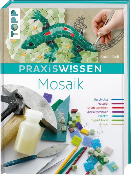 PraxisWissen Mosaik (Bruno Rodi) | frechverlag